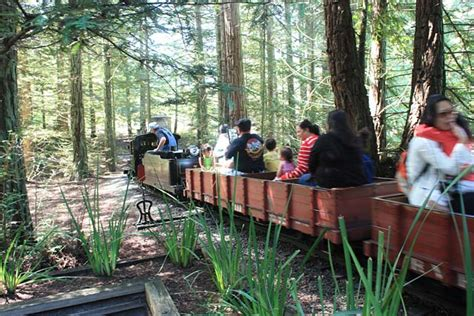 explore berkeleys tilden park  family fun