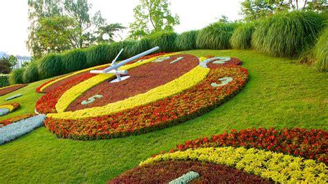 Geneva Flowers 18 rel 243 gio de flores em genebra su 237 231 a expedia br