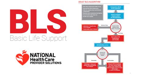 test bls basic support bls algorithm manual
