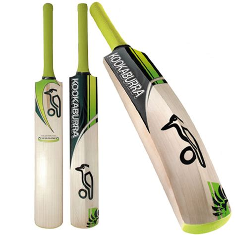 beste bat best cricket bats cricket bats in the world news icon