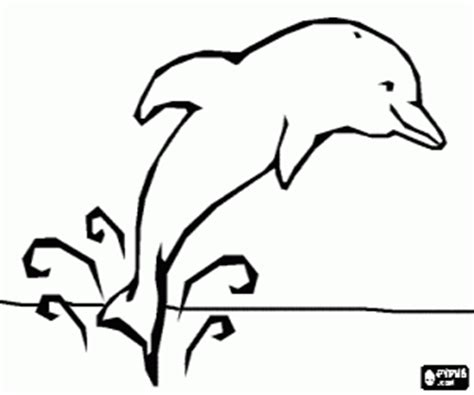 coloring pages dolphins jumping orca killer whale