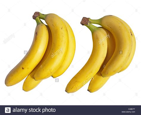 small banana vs regular banana difference redflagdeals com forums two small banans images reverse search