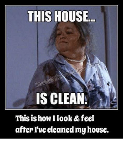 this house is clean this house is clean this is how ilook feel after i ve cleanedmyhouse meme on me me
