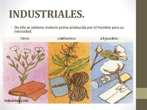 que es layout de plantas industriales clasificaci 243 n de las plantas por su utilidad
