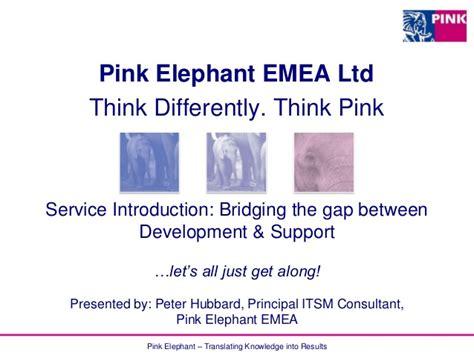 Gap Pink Elephant service introduction bridging the gap between development