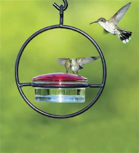 hanging sphere hummingbird feeder hummingbird feeders