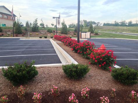 four seasons landscaping plantings four seasons landscaping