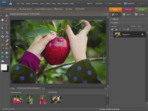 tutorial adobe photoshop elements 4 0 17 best images about photoshop tutorials on pinterest