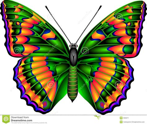 imagenes de mariposas unicas mariposa hotelroomsearch net