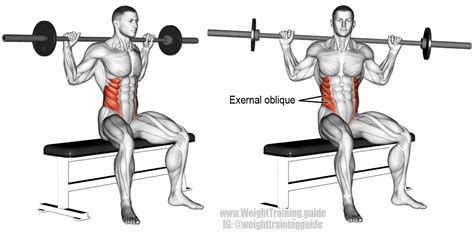 dumbbell bench press twist seated barbell twist exercise instructions and video