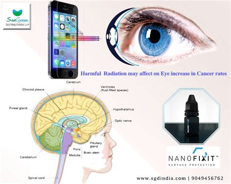 mobile phone radiations radiation from mobiles may lead to brain damage by sgdindia