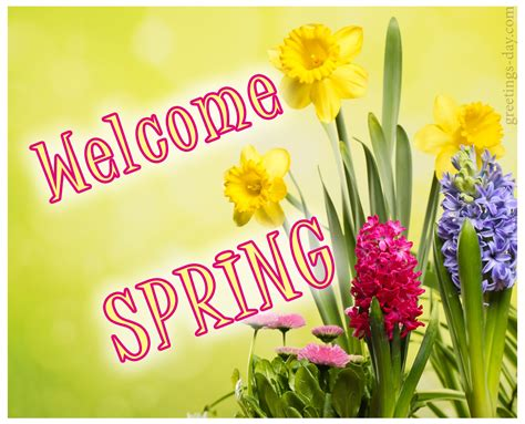 spring  cards animated pics quotes