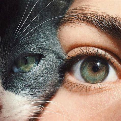 imagenes de ojos hipster fur tumblr