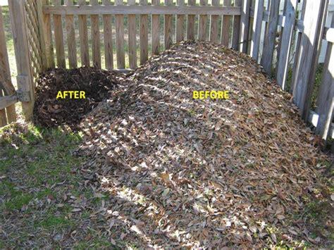 composting oak leaves waste management eco cents