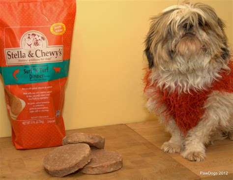chewy food stella chewys premium food podcast with owner moody by