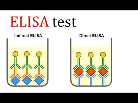 eia test elisa test