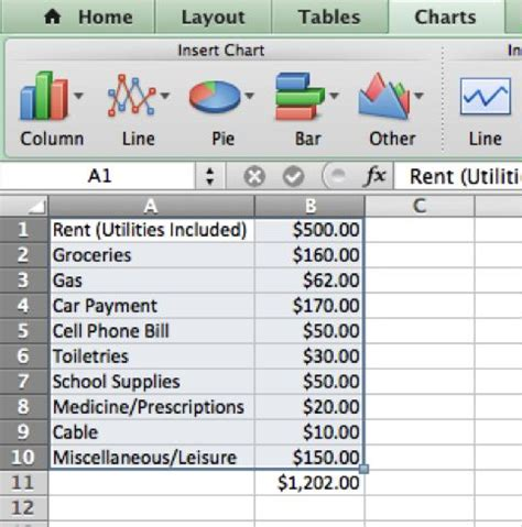 creating  college budget  microsoft excel  steps