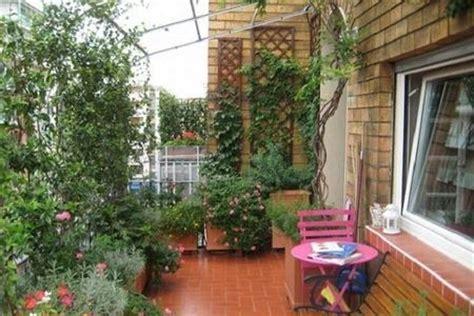 piante da terrazza stunning piante per terrazzo pictures house design ideas