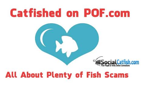 Plenty Of Fish Email Search Pof Scams All About Plentyoffish Catfish Scams