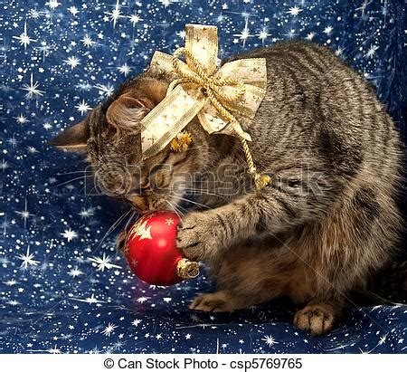european christmas decor stock images of european cat with decorations in their paws csp5769765 search stock