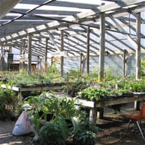 barton springs nursery nurseries gardening austin
