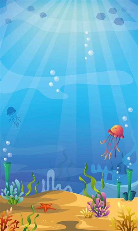 life magic box background photography  sea jellyfish