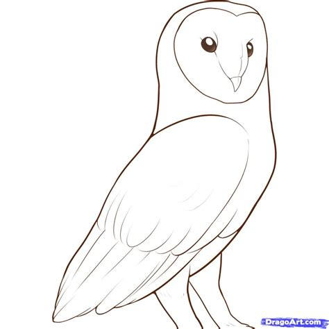 how to draw doodle owl simple owl drawing pencil drawing