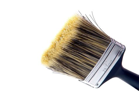 Paint Brush Hair Types by How To Choose The Paint Brush To Paint In