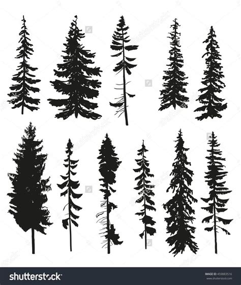 collection of 25 pine tree tattoo designs