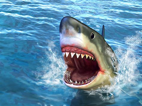 megalodon overestimated security awareness blog shark attack why is this