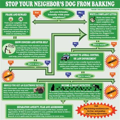 how i stopped my dog from barking at the tv puppy leaks stopping neighbor dogs from barking tips