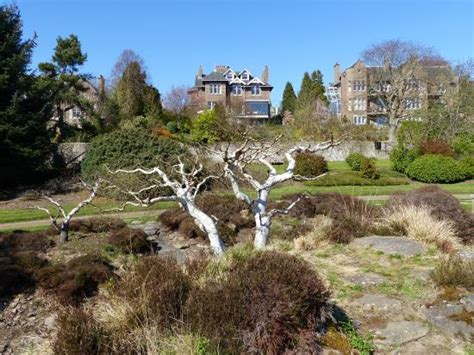 evolution garden picture of of dundee botanic