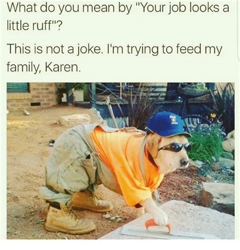 what do do what do you by your looks a ruff this is