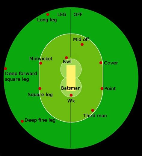 diagram of cricket fielding cricket pitch diagram images