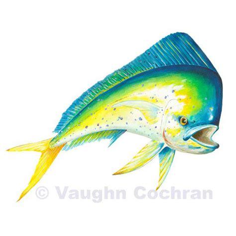 mahi mahi 3448 55 00 blackfly fishing store