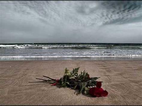 imagenes rosas en el mar luis eduardo aute rosas en el mar youtube