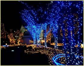 blue led outdoor christmas lights home design ideas