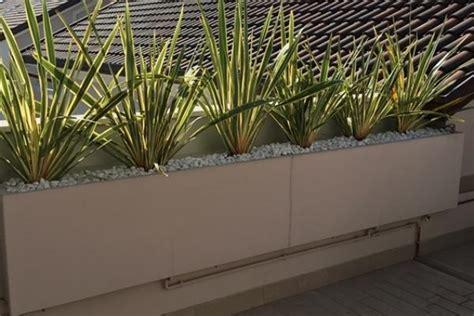 vasi rettangolari da esterno vasi particolari per rinnovare il giardino
