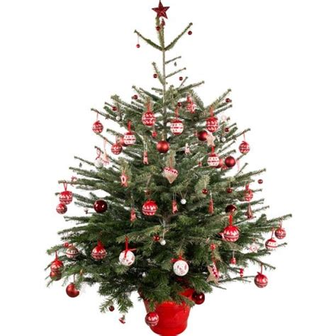 28 best real christmas trees cheap 6 5ft bayberry