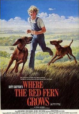 where the fern grows dogs where the fern grows 1974