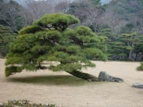 garten zen zen garten geplant vom gartenarchitekten