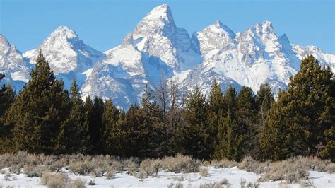 cheap haircuts jackson wy cheap flights to jackson hole get tickets now expedia