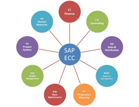 Best Sap Module For Mba Finance by Image Gallery Sap Modules