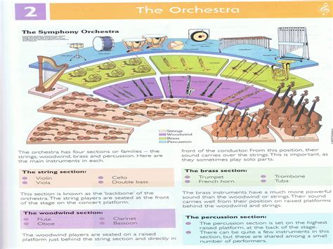 orchestra sections riverside the orchestra