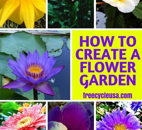how to start a flower garden in your backyard freecycle blog how to live green and healthy freecycle usa