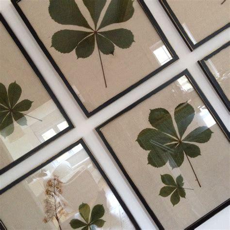 creed framing pressed leaves