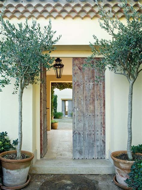 Front Door Trees 20 Impressive Ways To Frame Your Front Door With Planters Shelterness