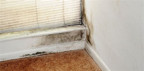 diy replacing mobile home floors in 7 easy steps