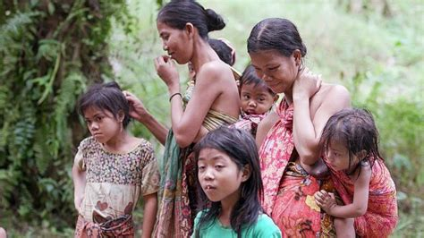 bangsa adat besipae  ntt  digusur  hutan adat pubabu anak anak  perempuan