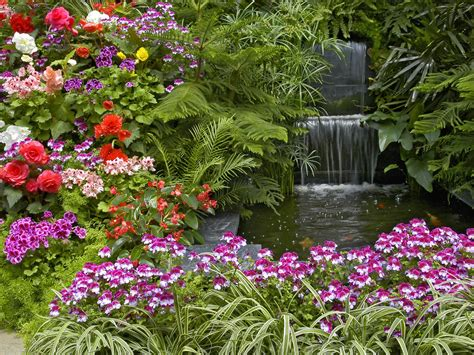 beauty garden beautiful nature flowers garden wallpaper